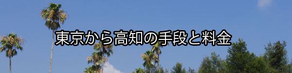 東京から高知へ帰省する手段と料金や所要時間の比較